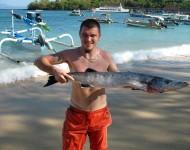 巴厘島駕駛員水上運動,fishingg