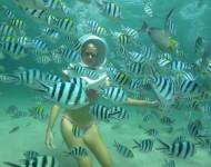 巴厘島駕駛員水上運動,海底漫步