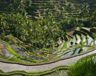 bali-tour-package-2h-1m-2xt-04