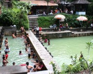 bali-tour-package-banjar-springs