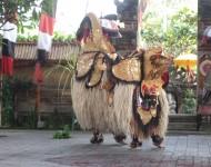 Kintamani-tour