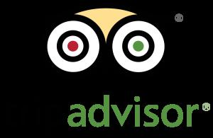 TripAdvisor_stacked_logo_FullColor-300x195